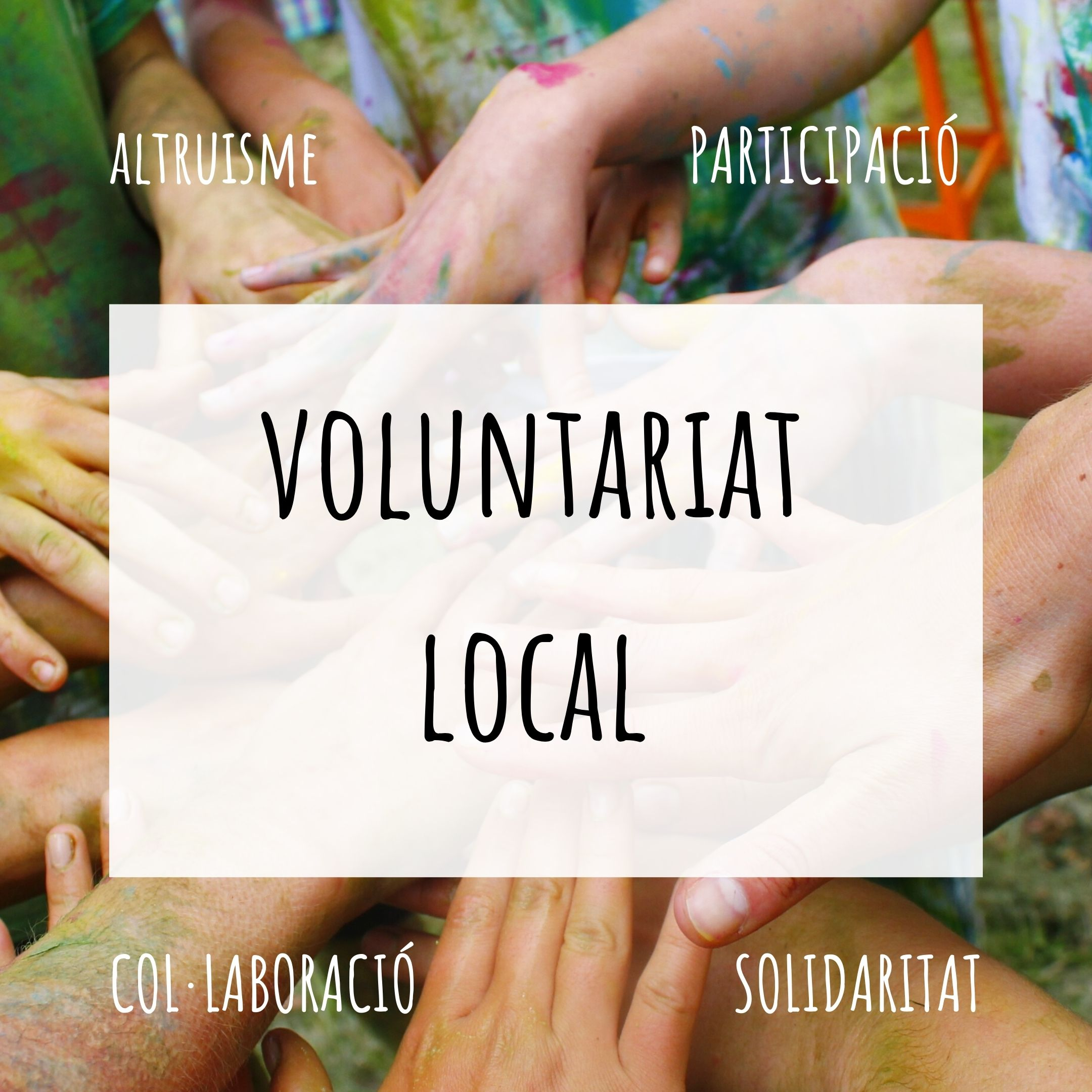 notícia Voluntariat Local